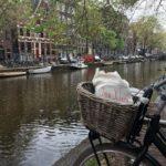 Oma Klara in Amsterdam naja oder zumindest unsere Jutetasche Vielenhellip